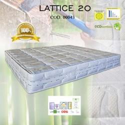 LATTICE 20