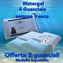 Guanciale Watergel